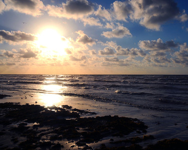 A sunrise at Mustang Island, near Port Aransas.  This image is protected by U. S. copyright laws so it cannot be copied, downloaded, or reproduced by any means without the formal written permission of Mark Chapman at Country Images.